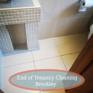 deep cleaning brockley