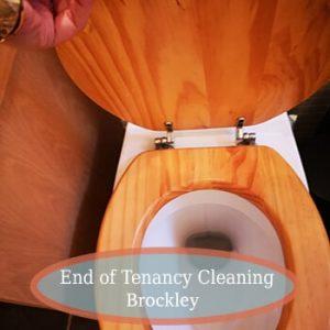 end of tenancy cleaning brockley