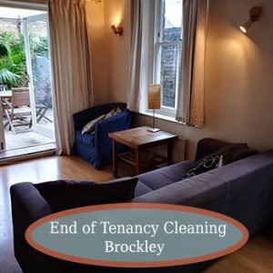 house cleaning brockley